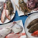Свежевыловленная рыба из Индийского океана