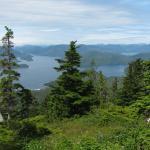 Olga Strait and Katlian Bay from Picnic Area