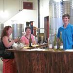 Tasting bar in the winery