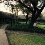 Safari Club Foto
