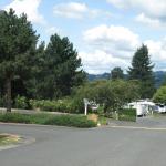 Nice clean large park