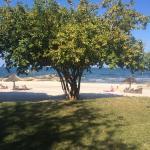 Foto de Makuzi Beach Lodge