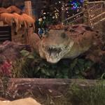 Зоопарк в Дубай Молл