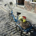 Bike com flores