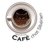 Cafe Chat Siberien