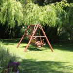 Swing under the willow