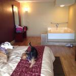 Foto de Red Roof Inn & Suites Muskegon Heights