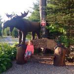 Foto de Moose Hillock Campground
