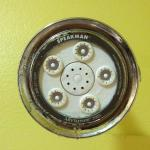Shower head with mold and calcium bulid-up