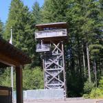tillamook forest center