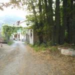 Photo de Agriturismo Sentiero dei Sapori
