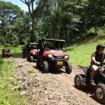 Vista Los Suenos Rain Forest  Day Tours