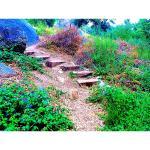 Foto de Whispering Pines Lodge
