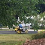 Spies in park on patrol
