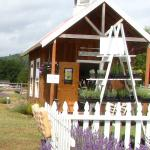 Little lavender store where you can buy honey, lavender sugar, lavender plants, & lavender produ