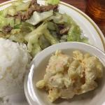 Kalua Pig and Cabbage with mac salad