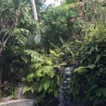 Photo of Pelangi Estate