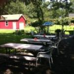 Backyard Picnic area