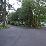 driveway to cottage