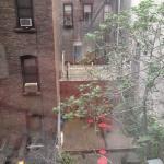 Vista desde la habitación 324