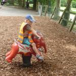 Zdjęcie Tilgate Park