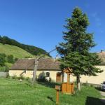 Valea Verde Retreat, the green house courtyard