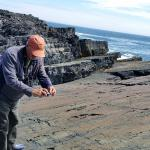 Photo de Mistaken Point Ecological Reserve