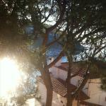 Foto de Casamar Hotel
