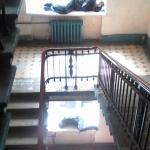 Обитатели парадной лестницы