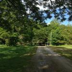 Bilde fra Dyer Woods Nudist Campground