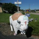 BEST WESTERN Buffalo Ridge Inn Foto