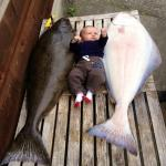 Baby Matteo and two 40lb halibut
