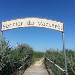 Sentier du Vaccarès