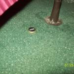 beer bottle cap on floor just under bed