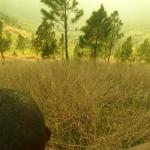 A hill behind Ja B