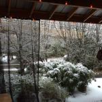 Even in winter our zen garden is charming