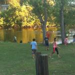 Kids playing with the geese on the lawn