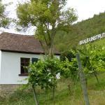 Saalhäuser Weinstuben
