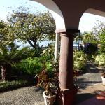 Photo de Quinta da Fonte