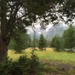 Foto de Jenny Lake Lodge