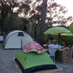 Foto de Camping El Maset