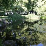 Dammanläggning i parken