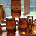 Spring Wildflower Honey