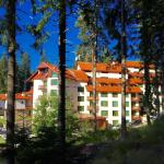 Forest Glade Apartments & Spa