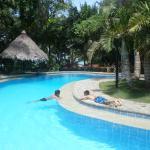 Foto de Alona Tropical Beach Resort