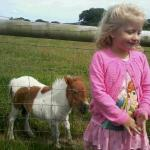 "This is my beautiful neice with the ""Dirty Horse"" (as someone put) i cant see a speck of dirt ca"