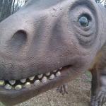 A smile-a-sarus