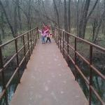 A bridge over a creek on a nature trail.