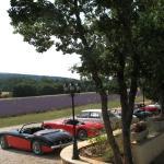 le parking face au champ de lavandes