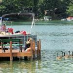 Foto de Clear Water Harbor
